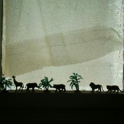 farewell, little jungle beasts