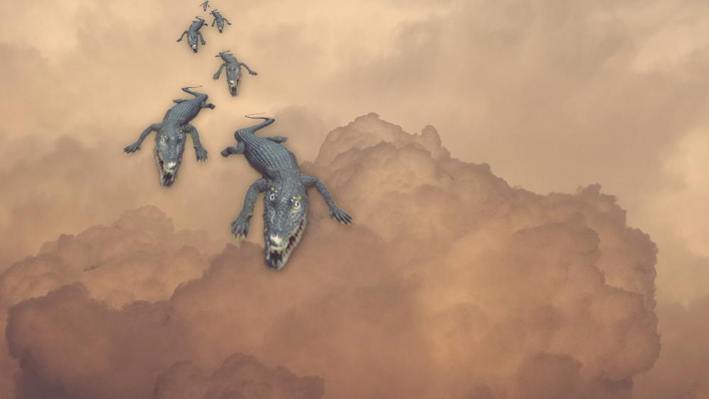 עננים תנינים copy